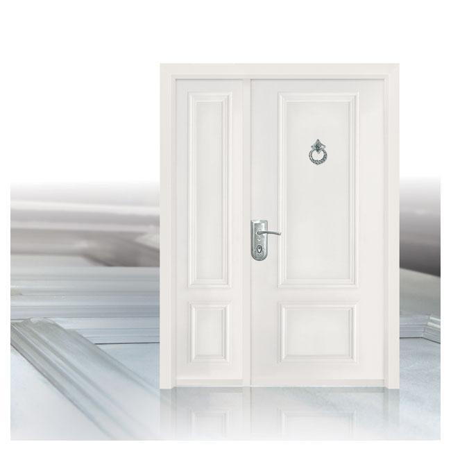 D9812-דלתות פלדה תדמית